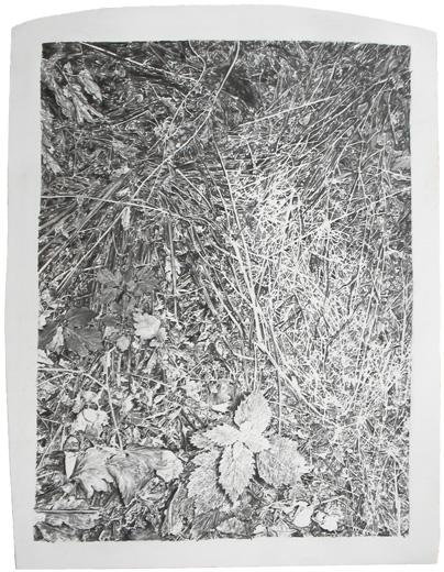 Philip Loersch Breitenlose Längen, 2010 Bleistift, Lack/ Polystyrol 49 x 38 cm